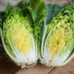 Можно ли пекинскую капусту при гастрите