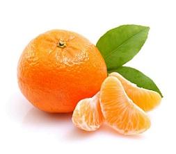 Можно ли мандарины при гастрите желедука