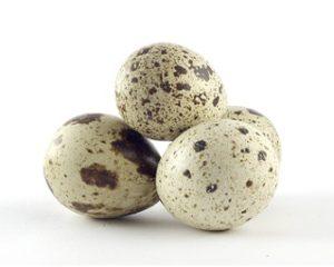 Можно ли перепелиные яйца при гастрите