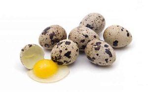 Можно ли перепелиные яйца при гастрите желудка