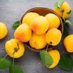 Можно ли абрикосы при гастрите