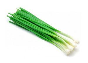 Зеленый лук при гастрите